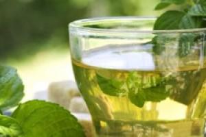 Conoce los múltiples beneficios del té verde